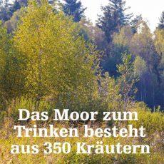 Das Moor zum Trinken besteht aus 350 Kräutern